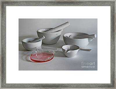 Science Class Framed Print by Paul Ward
