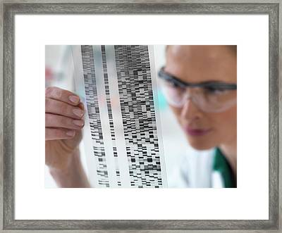 Scientist With Dna Results Framed Print by Tek Image