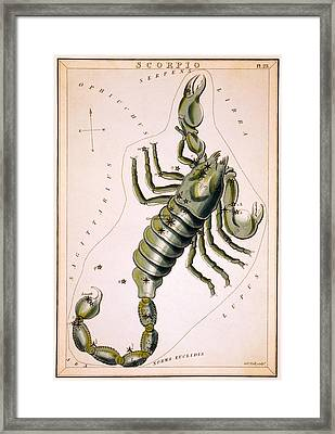 Scorpio Constellation  1825 Framed Print by Daniel Hagerman