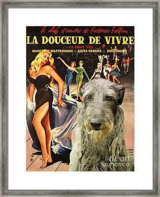 Scottish Deerhound Art - La Dolce Vita Movie Poster Framed Print by Sandra Sij