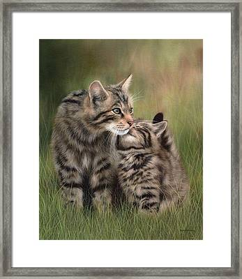 Scottish Wildcats Painting - In Support Of The Scottish Wildcat Haven Project Framed Print by Rachel Stribbling