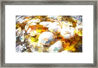 Scrambled Eggs Framed Print by Bob Orsillo