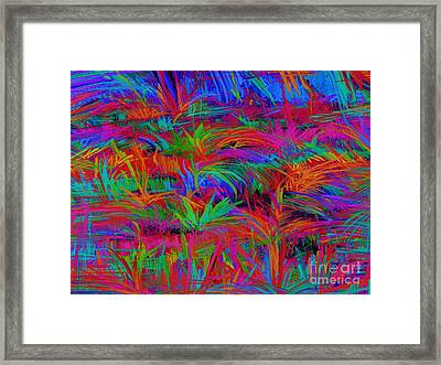Scratchy Framed Print by Keith Mills