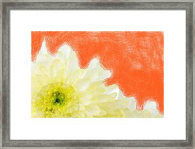 Scream And Shout Framed Print by Holley Jacobs
