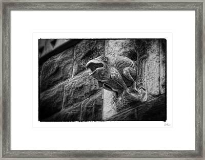 Sculpted Frog - Art Unexpected Framed Print by Tom Mc Nemar