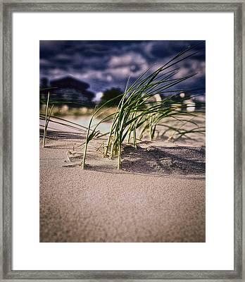 Sea Breeze  Framed Print by Kenny  Noddin