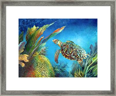 Sea Escape Iv - Hawksbill Turtle Flying Free Framed Print by Nancy Tilles