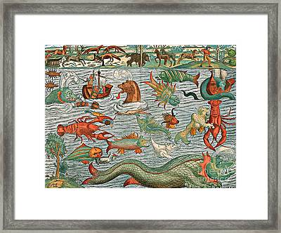 Sea Monsters 1544 Framed Print by Photo Researchers