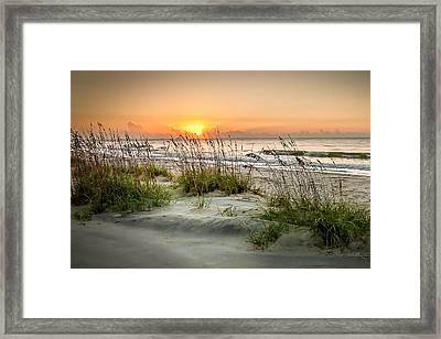 Sea Oat Islands Framed Print by Steve DuPree