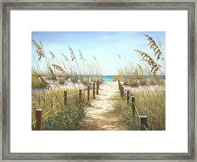 Sea Oat Path Framed Print by Laurie Hein