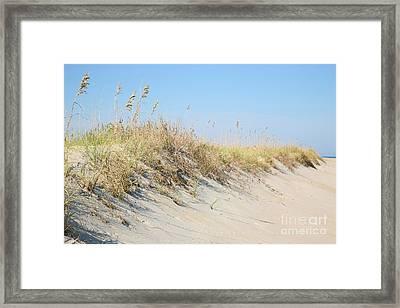 Sea Oat Serenity Framed Print by Suzi Nelson