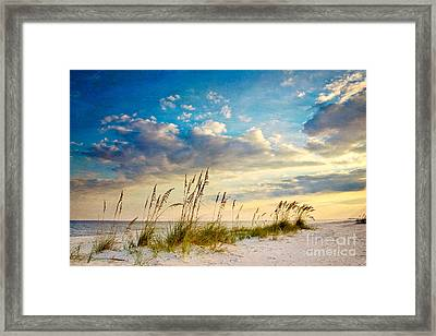 Sea Oats Sunset Framed Print by Joan McCool