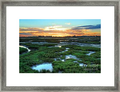 Sea Of Green Framed Print by English Landscapes