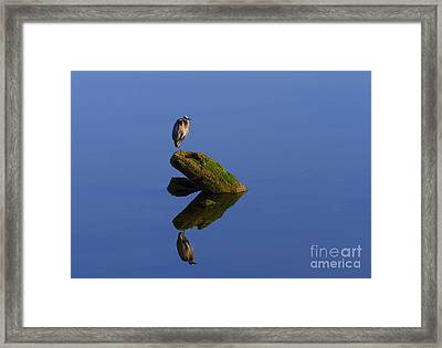 Sea Of Tranquility Framed Print by Mike  Dawson