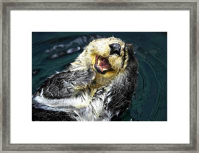 Sea Otter  Framed Print by Fabrizio Troiani