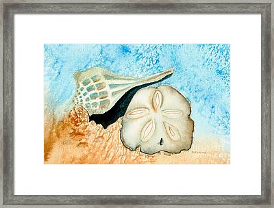 Sea Shell Treasures From The Ocean  Framed Print by Nan Wright