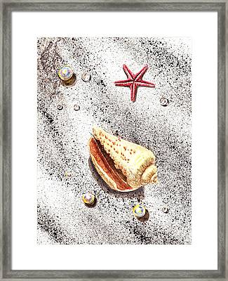 Sea Shells Pearls Water Drops And Seastar  Framed Print by Irina Sztukowski
