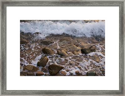 Sea Shore Framed Print by Carol Weitz