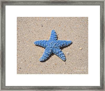 Sea Star - Light Blue Framed Print by Al Powell Photography USA