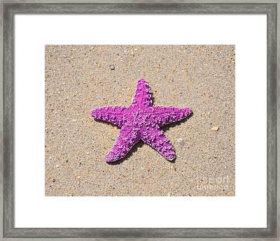 Sea Star - Pink Framed Print by Al Powell Photography USA