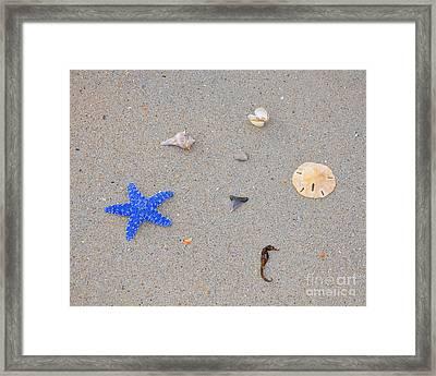 Sea Swag - Dark Blue Framed Print by Al Powell Photography USA
