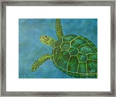 Sea Turtle Framed Print by Julie Neuman