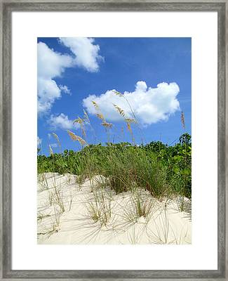 Seagrass And Sky Framed Print by Randall Weidner