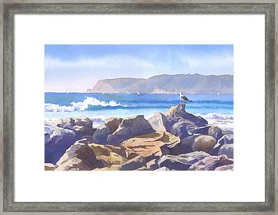 Seagull And Point Loma Framed Print by Mary Helmreich
