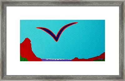 Seagull Framed Print by Jim  Furlong