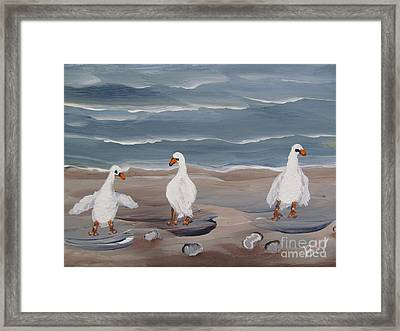 Seagulls At The Beach Framed Print by Beverly Livingstone
