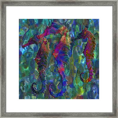 Seahorse 2 Framed Print by Jack Zulli