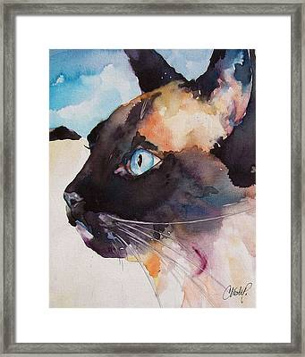 Seal Point Siamese Cat Framed Print by Christy  Freeman