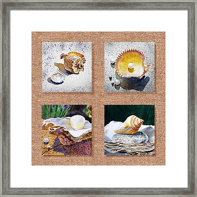 Seashell Collection I Framed Print by Irina Sztukowski