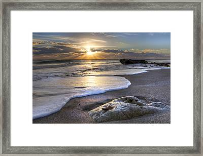 Seashell Framed Print by Debra and Dave Vanderlaan