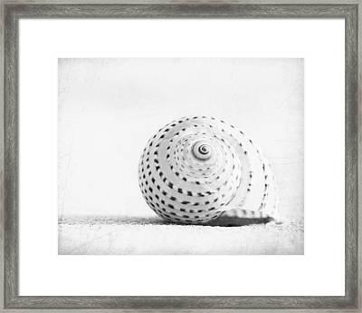 Seashell Voices Framed Print by Carolyn Cochrane