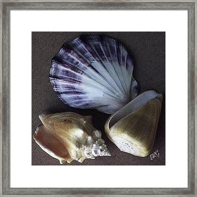 Seashells Spectacular No 30 Framed Print by Ben and Raisa Gertsberg