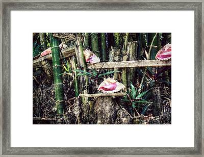 Seaside Display Framed Print by Melanie Lankford Photography