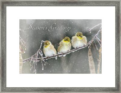 Season's Greetings Framed Print by Lori Deiter