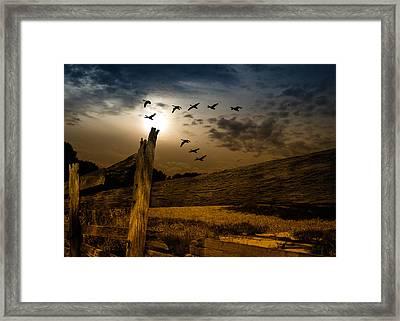 Seasons Of Change Framed Print by Bob Orsillo