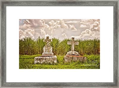 Seasons Of Life Framed Print by Scott Pellegrin