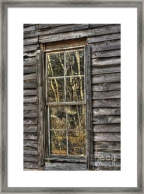 Seasons Past Framed Print by Benanne Stiens