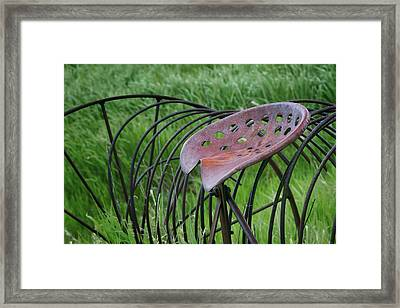 Seating For One - Vintage Hay Rake Seat  Framed Print by Nikolyn McDonald