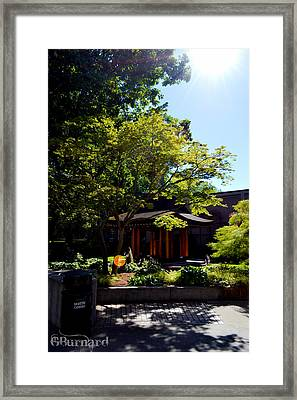 Seattle Japanese Garden Framed Print by Guinapora Graphics