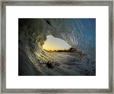 Seaweed Barrel Framed Print by David Alexander