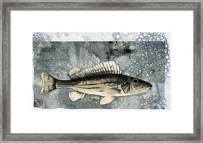 Seaworthy Framed Print by Carol Leigh