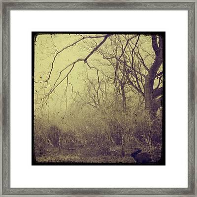 Secret Garden Framed Print by Gothicolors Donna