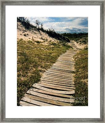 Secret Path Framed Print by Gerlinde Keating - Galleria GK Keating Associates Inc