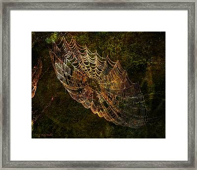 Secret Spider Sanctuary Framed Print by J Larry Walker