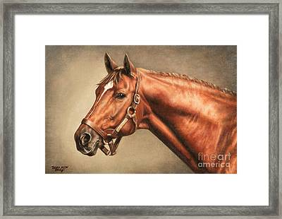 Secretariat At Claiborne Framed Print by Thomas Allen Pauly