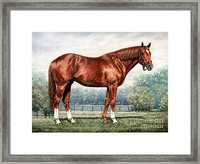Secretariat Framed Print by Thomas Allen Pauly